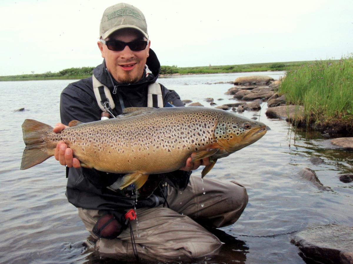 Pohjoisen taimenjoet – eri jokityypit ja niiden ominaispiirteet